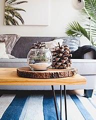 Minimalist living room scene