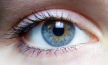 220px-Iris_-_left_eye_of_a_girl