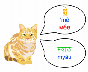 Illustration of cat making 'meow' sound in several languages