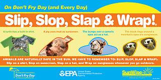 Slip, Slop, Slap, Wrap poster