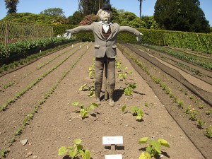 640px-The_Lost_Gardens_of_Heligan_Scarecrow