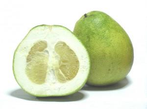 800px-Citrus_grandis_-_Honey_White