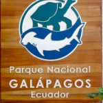 GALAPAGOS GIANT TORTOISES – Bring Sunscreen