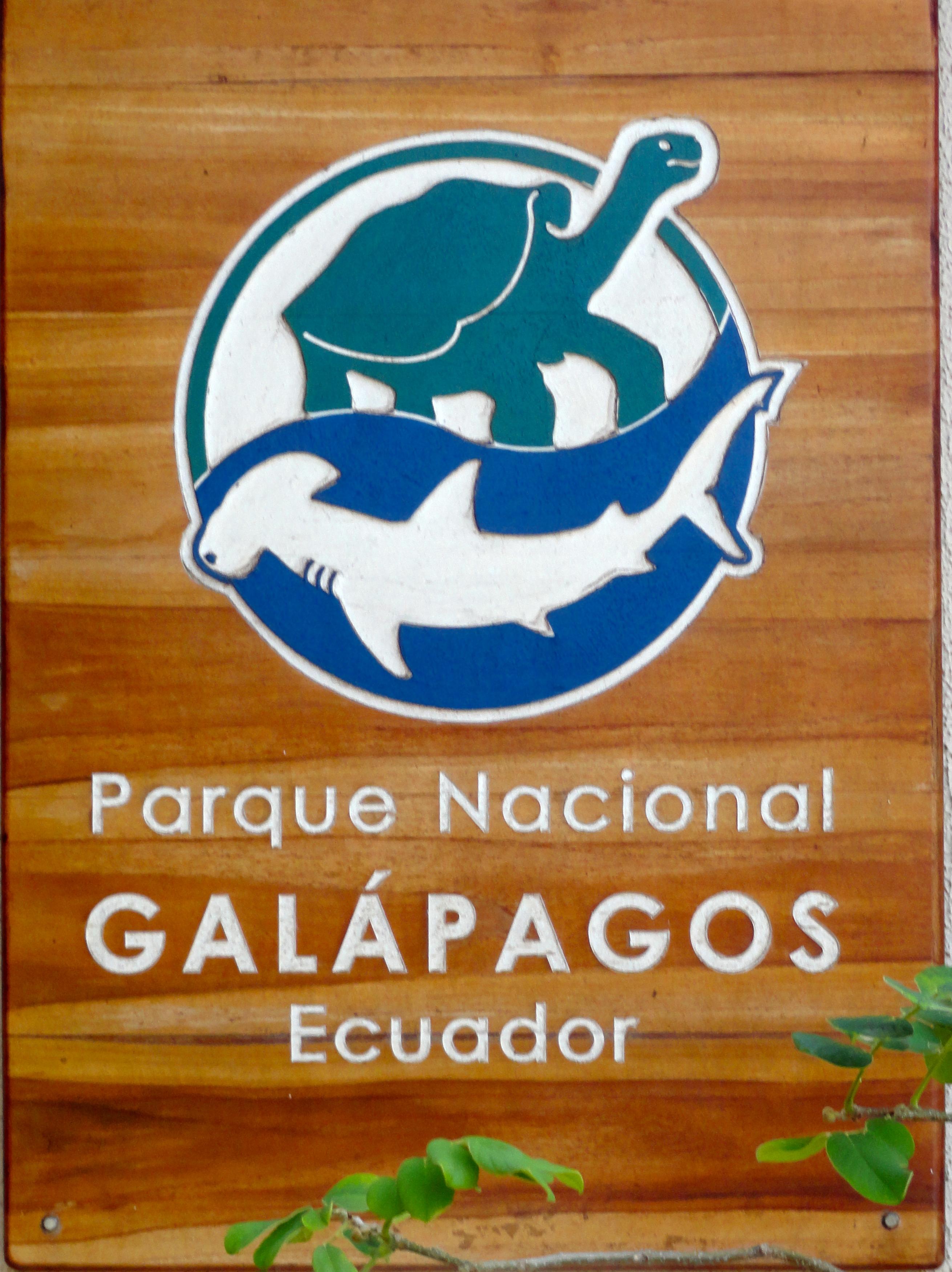 GALAPAGOS GIANT TORTOISES – Bring Sunscreen