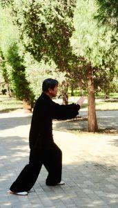 Tai Chi Master, Tiensan Park