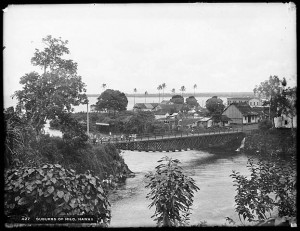 Distant_view_of_the_suburbs_of_Hilo,_Hawaii,_1907_(CHS-427)