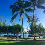 Blue Zones Come to Hilo