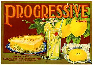 Progressive produces made with Sunkist lemons