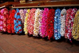 Lei Display