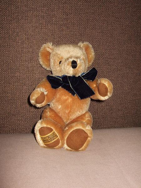 TEDDY BEAR PICNICS