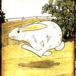 Peter RabbitRrunning